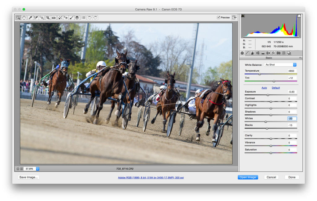 Una finestra di Camera Raw, il plugin incluso in Photoshop